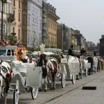 2009 krakow april