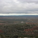 Retreat center surrounded by olive groves